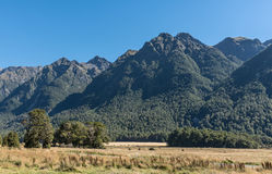 Knobs Flats landscape in Fiordland National Park, New Zealand. Fiordland National Park, New Zealand - March 16, 2017: The yellow dry flat plain of knobs Flats royalty free stock image