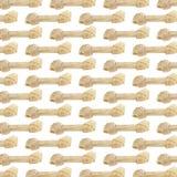 Knochen-Hintergrund stockfoto