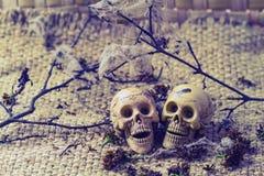 Knochenmann und -frau des menschlichen Körpers des Stilllebenkonzeptes Stockfoto