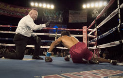 Knock down for the count professional boxing Royalty Free Stock Image
