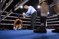 Knock Down Professional Boxing in Phoenix, Arizona. Sep. 3, 2016. A boxer is down for the count after a knock down. A huge crowd was captivated by these stock photo
