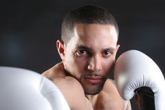 Knock Out Punch Royalty Free Stock Image