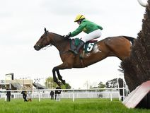 Horse Racing. Knockaderry flyer jumps the last on his way to winning at cheltenham races 5-5-17 Royalty Free Stock Photography
