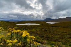 Knockan Crag w Szkocja fotografia royalty free