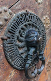 Knocker двери льва головной, старые ручки бронзы на старом дубе стоковое изображение rf