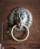 Knocker двери льва головной, старый Knocker Стоковые Изображения