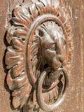 Knocker в древесине и бронзе Стоковая Фотография RF