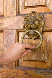 knocker lionhead Obraz Royalty Free