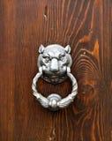 Feline head door knocker. Knocker in metal feline`s head on old wooden door royalty free stock photos