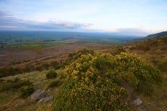 Knockmealdown Mountains Stock Images