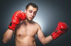 Knockout - αστείος μπόξερ Στοκ εικόνες με δικαίωμα ελεύθερης χρήσης