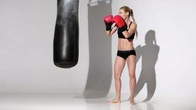 Knockout για τη punching τσάντα του όμορφου μπόξερ κοριτσιών απόθεμα βίντεο