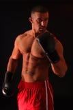 Knockout. A muscular boxer in the spotlight Stock Photos