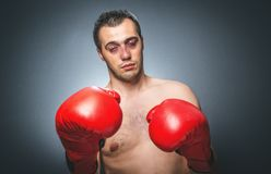 Knockout - Funny boxer Stock Photo