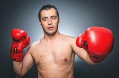 Knockout - Funny boxer Royalty Free Stock Photo