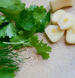 Knoflook en groen Stock Foto