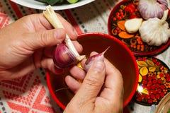 Knoflook het schoonmaken proces manueel Handenclose-up en met het hoofd van knoflookkruidnagels op een plaatachtergrond in volkss Stock Foto's