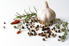 Knoflook met droge peper en Spaanse peper Stock Foto's