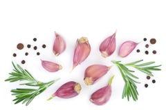 Knoflook met rozemarijn en peperbollen op witte achtergrond met exemplaarruimte worden geïsoleerd voor uw tekst die Hoogste menin Stock Fotografie
