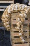 Knoflook op markt Stock Foto's