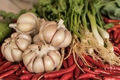 Knoflook, Spaanse pepers, koriander, plantaardige achtergrond, Royalty-vrije Stock Afbeelding