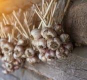 Knoflookbundels die op houten achtergrond, het close-up van knoflookbundels, zon hangen, openlucht royalty-vrije stock afbeeldingen