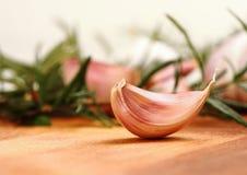 Knoflookkruidnagel met verse rozemarijn op achtergrond royalty-vrije stock foto's