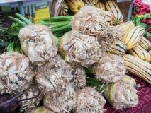 Knollensellerie am Corvallis-Landwirt-Markt, Oregon stockbilder