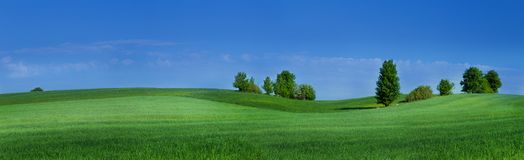 Knolls with green grass and blue sky Stock Photos