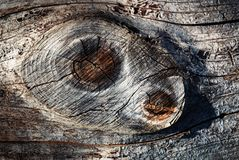 Knoop twee op hout stock fotografie