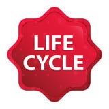 Knoop van de starburststicker van de het levenscyclus de nevelige rozerode royalty-vrije illustratie