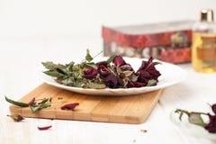 Knopparna torkade rosor Arkivbild