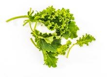 Knoppen van boerenkoolkool Salade met een rustiek en gezond aspect stock foto's