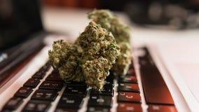Knoppen van marihuana die op het laptop toetsenbord liggen Drugs en creativiteitconcept stock fotografie