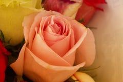Knospe in einem Blumenstrauß lizenzfreie stockfotos