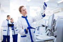 Knospender nachdenklicher Forscher, der DNA-Modell hält Stockbilder