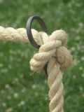 Knot. Rope knot royalty free stock images