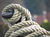 Knot. Ted rope onboard a barge Stock Photography