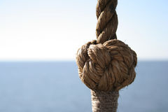 Knot. Marine knot Stock Images