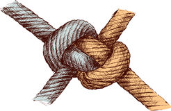 Knot. Vector drawing of strong knot of two ropes Stock Images