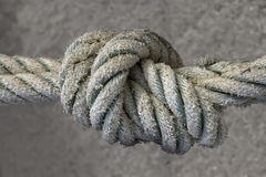 Knot. Close view of a sailor knot over a grungy background royalty free stock photo