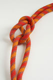 Knot. From a multi-coloured cord on a white background Stock Images