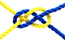 Knot. Ropes yellow and blue attached by a knot Stock Photos