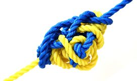 Knot. Yellow and blue ropes tied by a complicated knot isolated on white Royalty Free Stock Photography