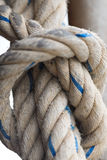 Knot. Royalty Free Stock Photography