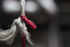 Knot in cord stock photography