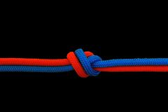Knot on a cord Stock Image