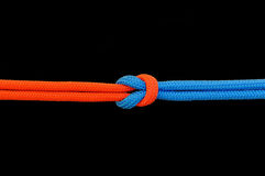 Knot on a cord. On a dark background stock photography