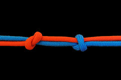 Knot on a cord Stock Images