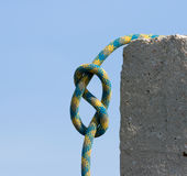 Knot figure-of-eight. Stock Image